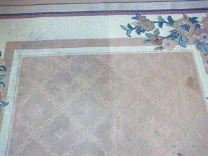 Pranie dywanów białołeka